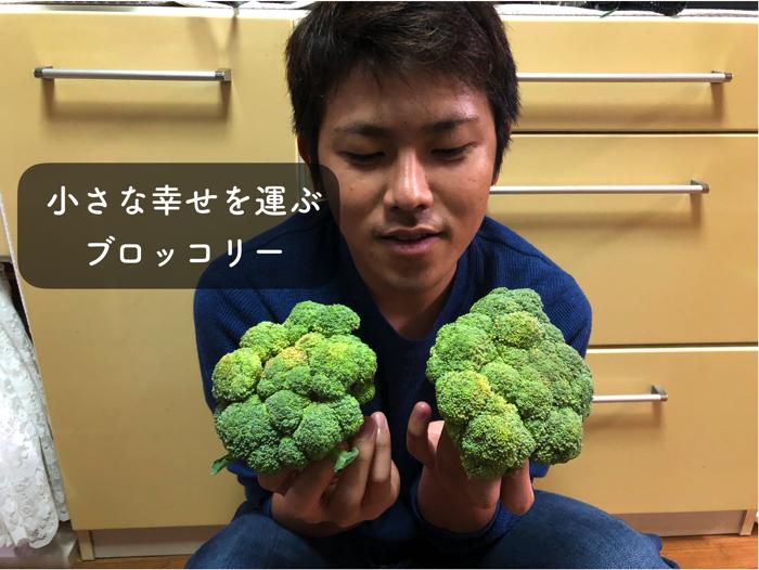 ブロッコリーの栄養と栽培方法