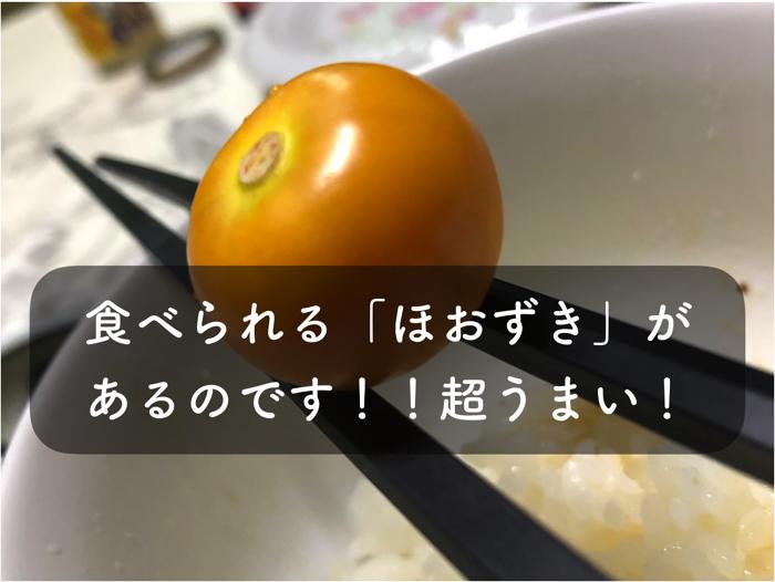 食べられるフルーツほおずき
