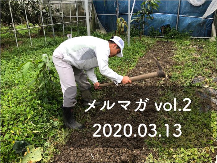 糸満フルーツ園けんちゃんのメールマガジン