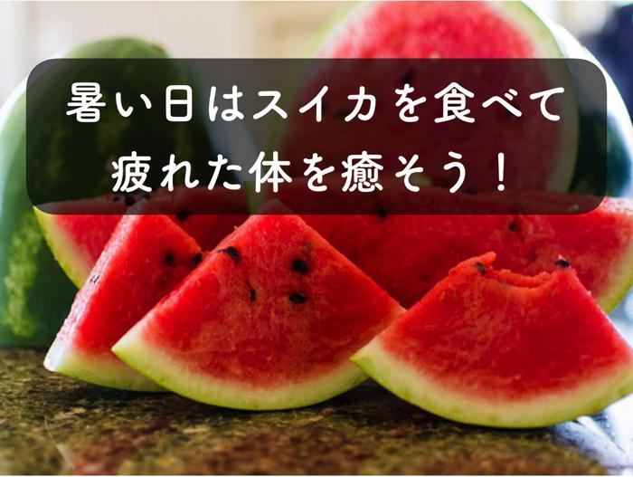 夏,暑い日にはスイカを食べよう!スイカの特徴について解説します!