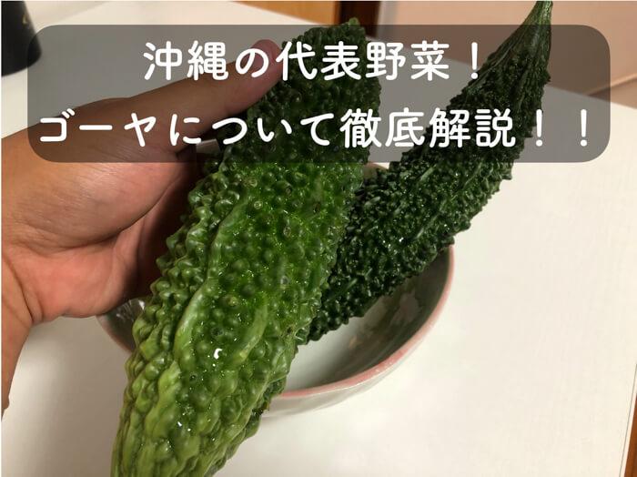 ゴーヤの特養や食べ方について徹底的に解説!栽培方法の「摘芯」についても動画解説してます!