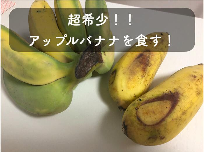超希少!アップルバナナを購入して食べてみました!特徴や味の感想まで紹介!