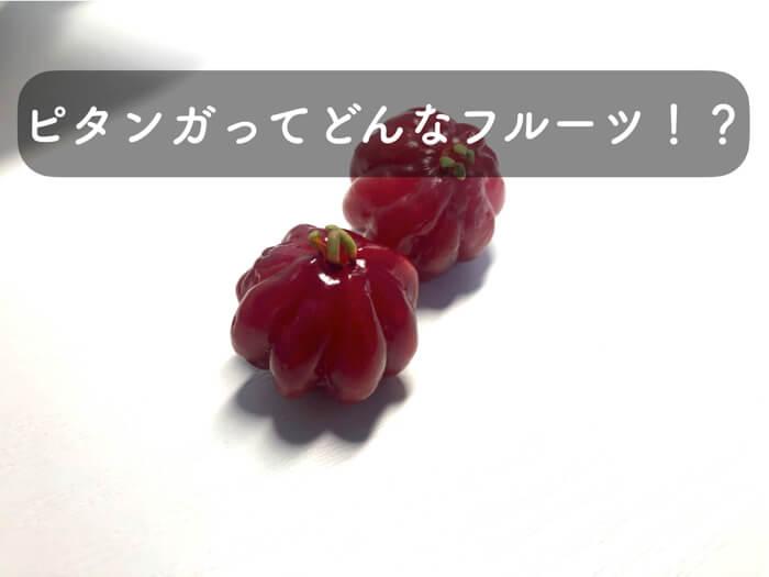 ピタンガを実際に食べてみて,味の感想をレビュー!ピタンガの特徴まで!