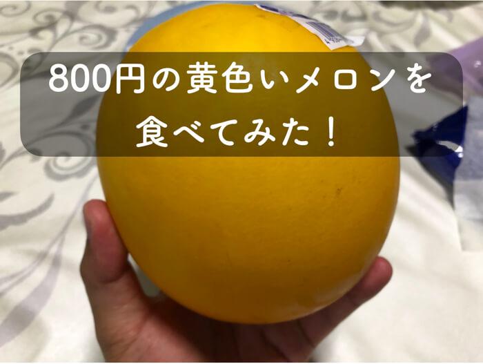 【珍フルーツ!?】黄色いメロン「イエローキング」を食べてみた!!!