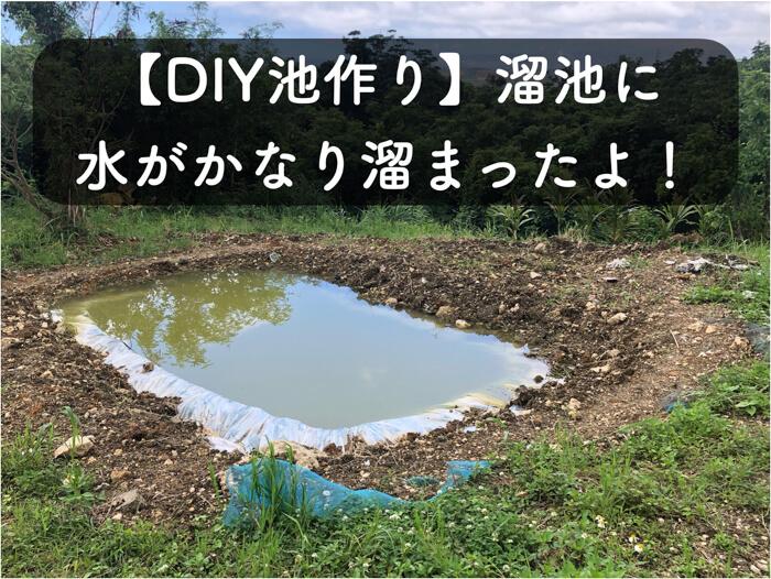 【DIY池作り2】雨水がきちんと溜まって,ため池が上手く機能していることを確かめたよ!