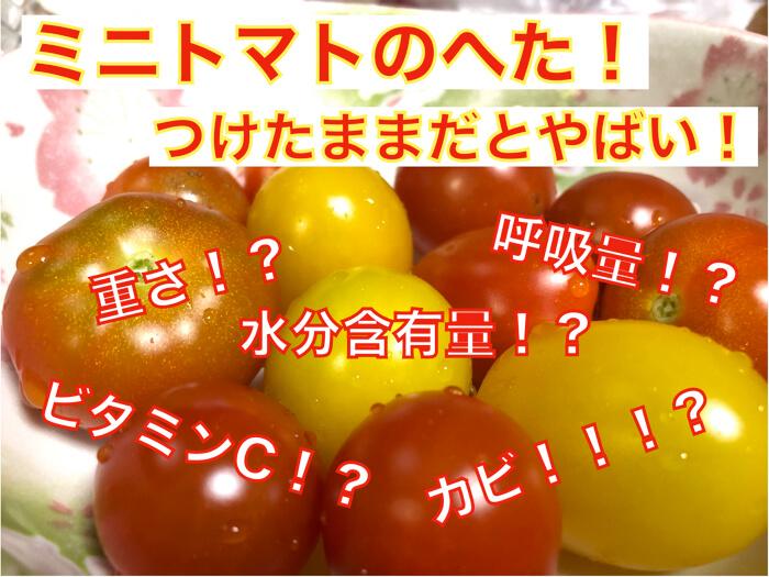 【ミニトマトの保存】間違ってはないですか?ヘタを取って保存するべき理由!