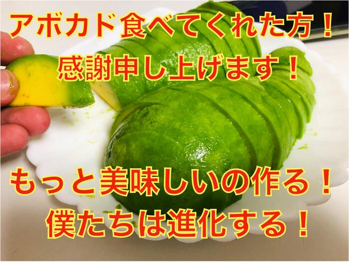 【感謝】アボカドを食べてくれた人たちの感想まとめ!