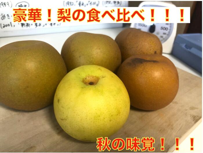 【梨くらべ!】幸水・豊水・二十世紀梨・あきづきの4つの品種の違い!解説!甘くて美味しいのはどれ!