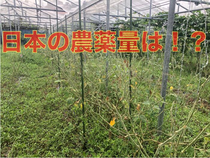 日本は世界的にもどのくらい農薬を使用しているのか!?