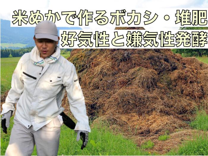 【米ぬかボカシ】米ぬかがなぜボカシ材や堆肥づくりに使用されるのか!?好気性発酵と嫌気性発酵!