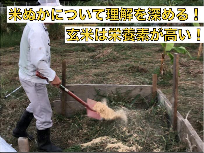 米ぬかについて理解する!山型の肥料として力を発揮!十分活用できる!