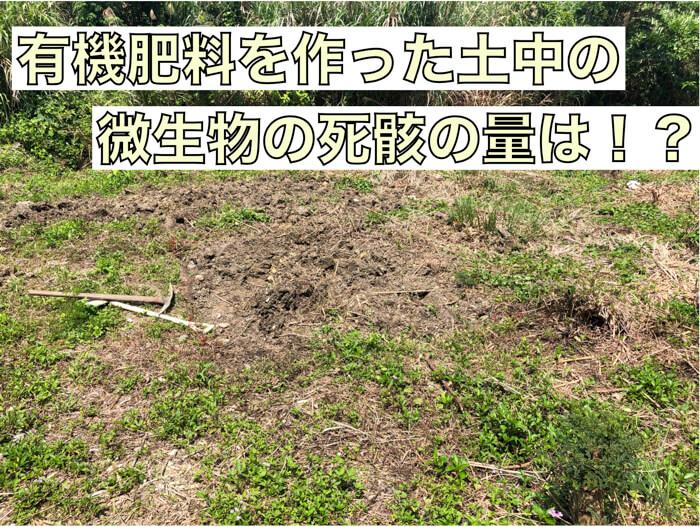 有機肥料で栽培したときの土中の微生物の死骸はどのくらい!?