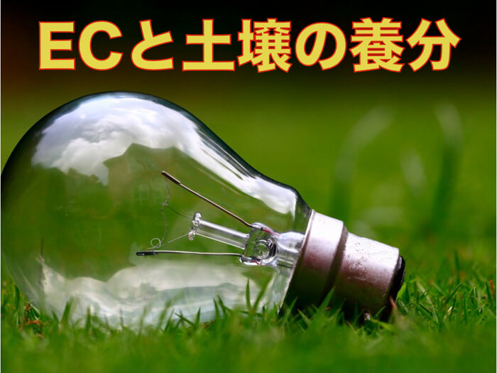 土壌のEC(電気伝導率)とは!?畑に肥料がどのくらい入っているのかが分かる!?