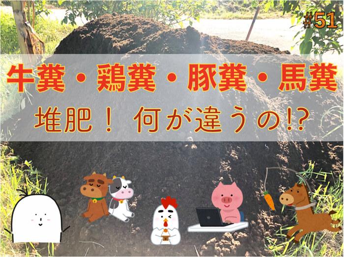家畜由来の堆肥:牛糞,豚糞,鶏糞,馬糞は何が違うのか!?