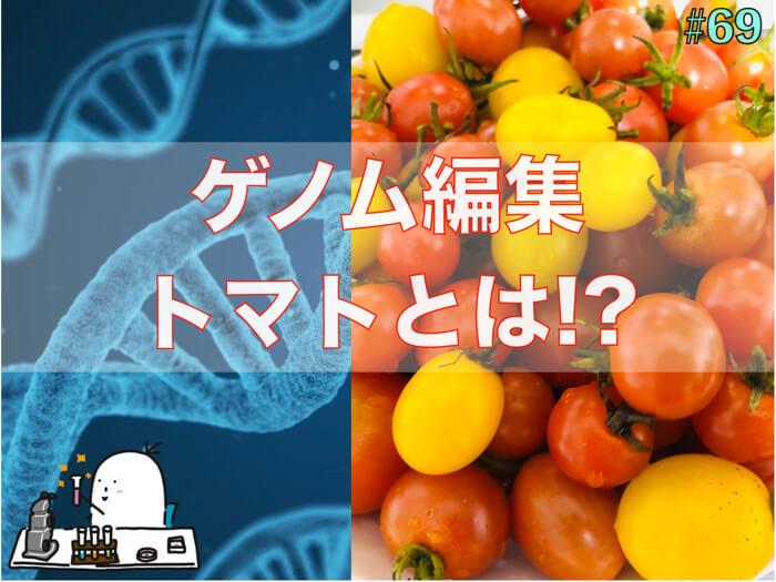ゲノム編集トマトについて!GABAとは!?ゲノム編集とは?