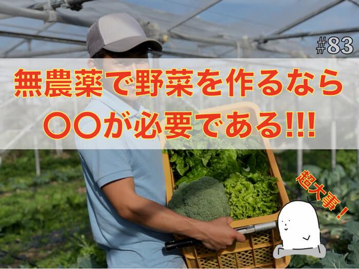 【自然農】無農薬で野菜を作るさいには〇〇が必要である!?