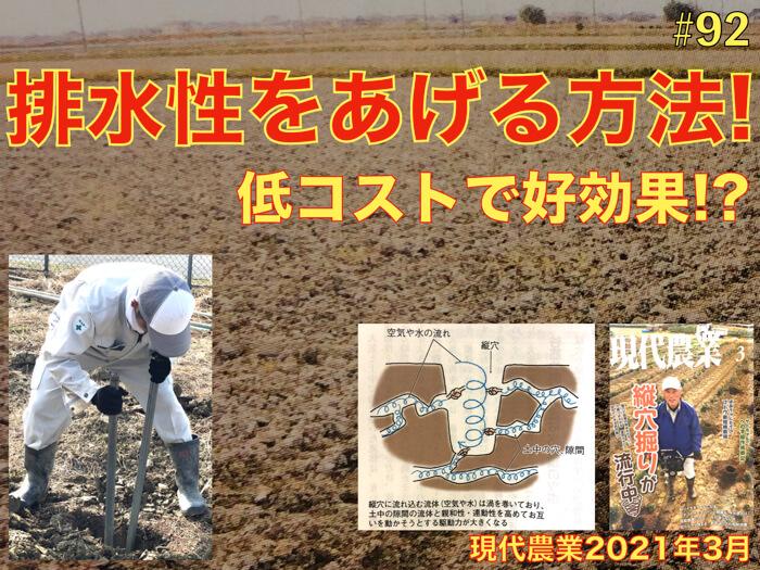 【低コスト】畑の水はけを劇的に良くする方法!?