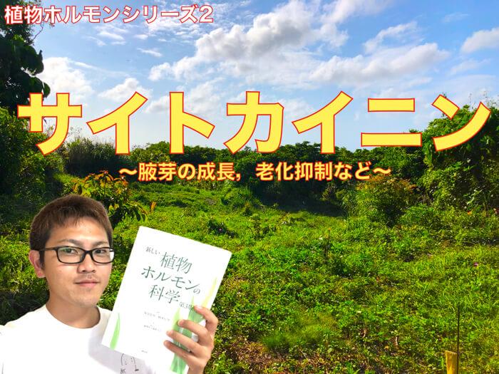 【動画解説】サイトカイニンと生理作用・役割,農園芸への活用