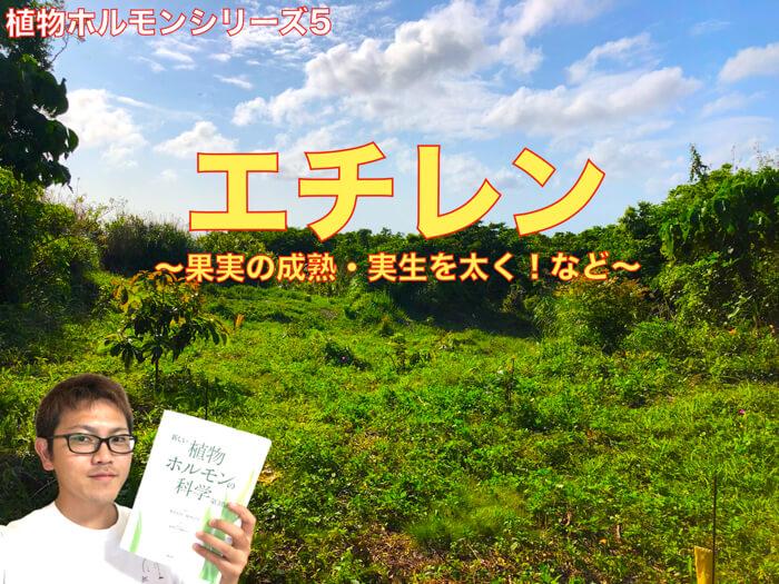 【植物ホルモン】エチレンの話! 生理作用や役割,歴史・応用まで!【動画解説】