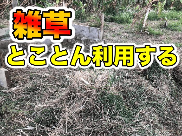 刈った雑草で堆肥を作ろう.