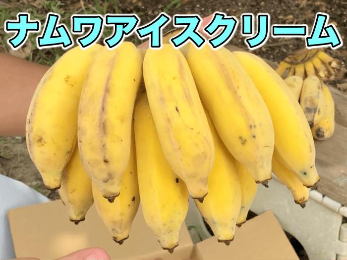 ナムワアイスクリームバナナを食べに.